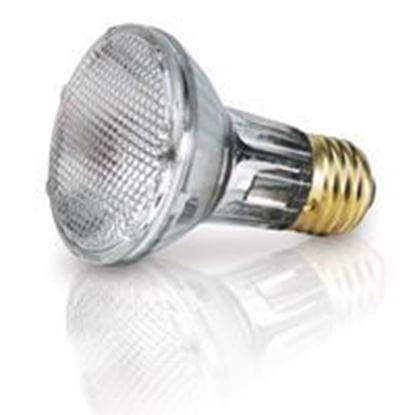 Picture of Light Bulbs Halogens PARs PAR20 50W Replacement Flood 43PAR20IX