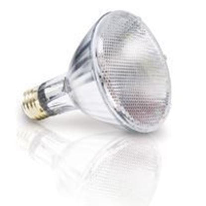 Picture of Light Bulbs Halogen PARs Par30 60W Replacement Flood - 30° 60PAR30IX LN