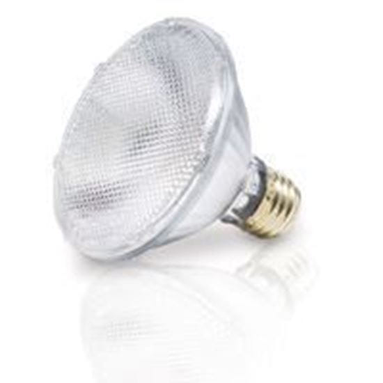 Picture of Light Bulbs Halogens PARs PAR30S 75W Replacement Flood - 30° 60PAR30IX SN