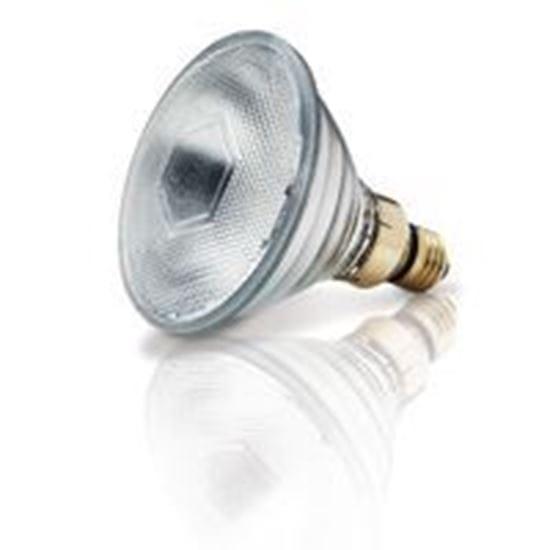 Picture of Light Bulbs Halogens PARs PAR38 45 Replacement Spot - 10° 45PAR38Q 9MW
