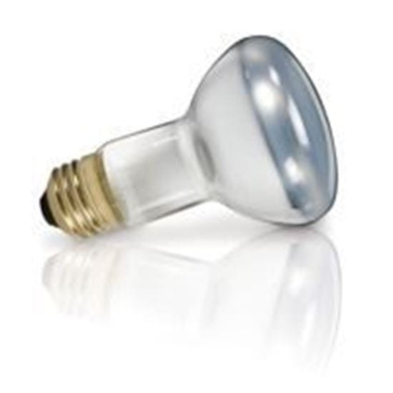 Picture of Light Bulbs Incandescents BR20 75W REPLACEMENT Flood medium 75R20 FL 12MW