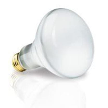 Picture of Light Bulbs Incandescents BR30 65W REPLACEMENT Shatterguard Coated medium 65R30 FL SG 12MW