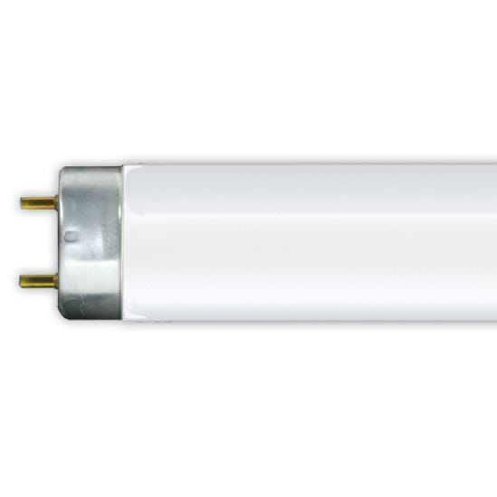 Picture of Light Bulbs Fluorescent Tubes Linear T8 Bipin 4100K F32T8 841 LC2 3YR
