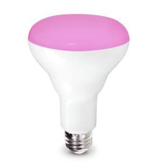Picture of 9BR30/PINK/DIMMABLE/3YR