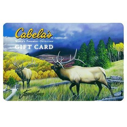 Picture of Cabela's Gift Card(s)